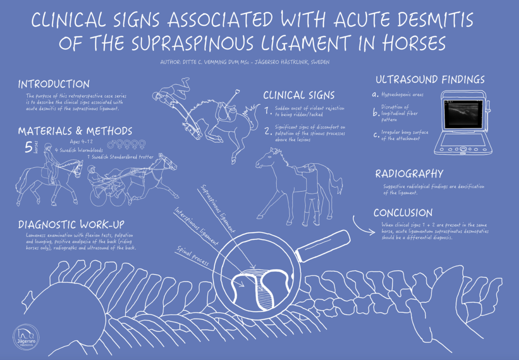 clinical signs associated with acute desmitis of the supraspinous ligament in horses poster presentation veterinary medicine dr ditte vemming dvm msc botnia hästklinik